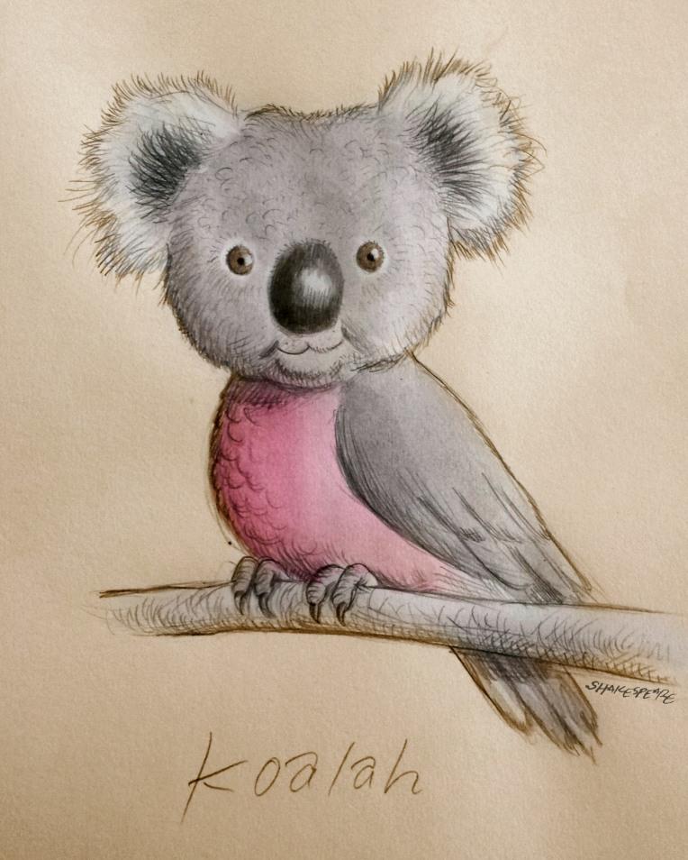 koalah