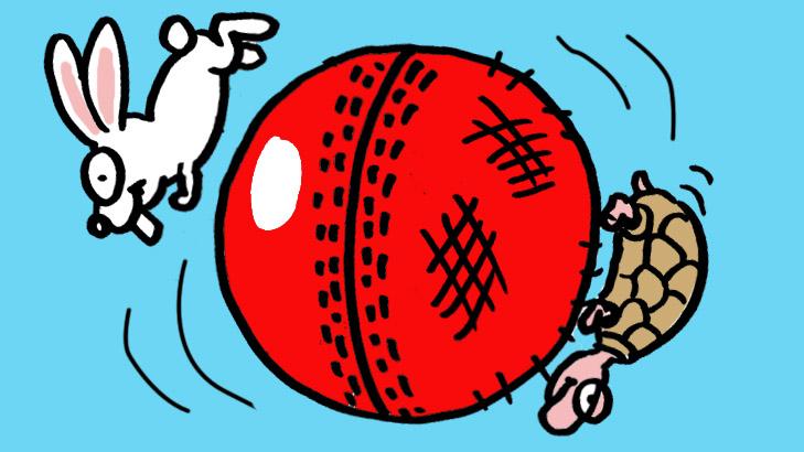 furry cricket 729