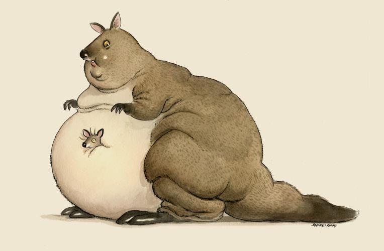 fat kanga